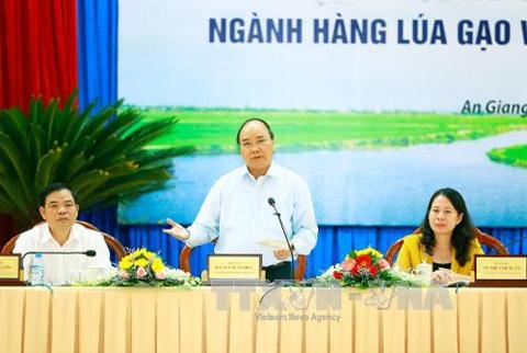 Ngành lúa gạo Việt Nam cần tầm nhìn mới, đem lại giá trị gia tăng tốt nhất cho nông dân, doanh nghiệp